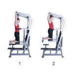 Armstrong Pullup Program for Women